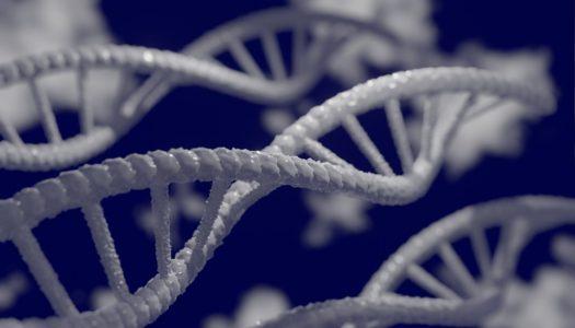 Genetikai vizsgálatok akár születés előtt